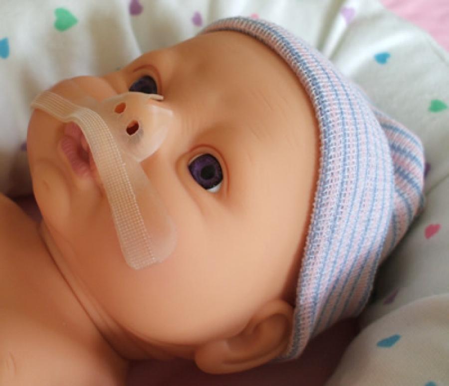 Protector tabique nasal